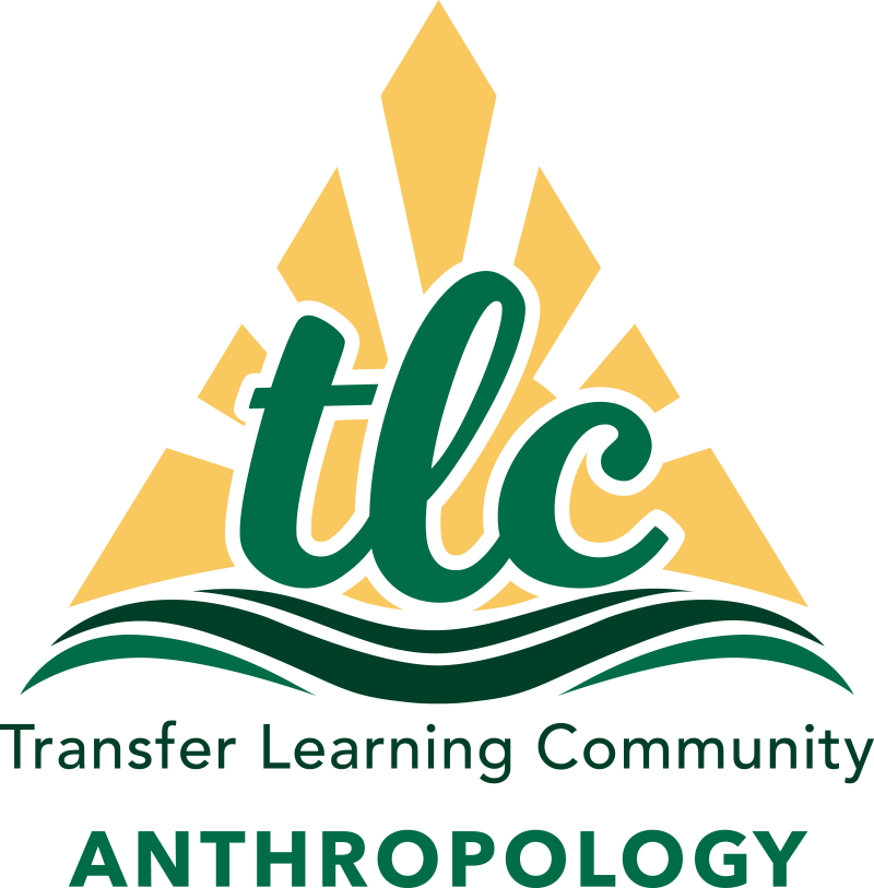 Transfer Learning Community Anthropology