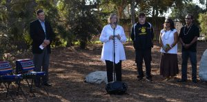 In advance of California Native American Day, California State University Long Beach held an event to officially recognize the reburial of remains and various artifacts in an area on the campus. CSULB President Jane Close Conoley expressed her honor that the school is one of the first institutions to complete a reburial on a university campus under the Native American Graves Protection and Repatriation Act (NAGPRA). The celebration included speeches and traditional Native American songs. Long Beach September 22, 2016. Photo by Brittany Murray, Press Telegram/SCNG
