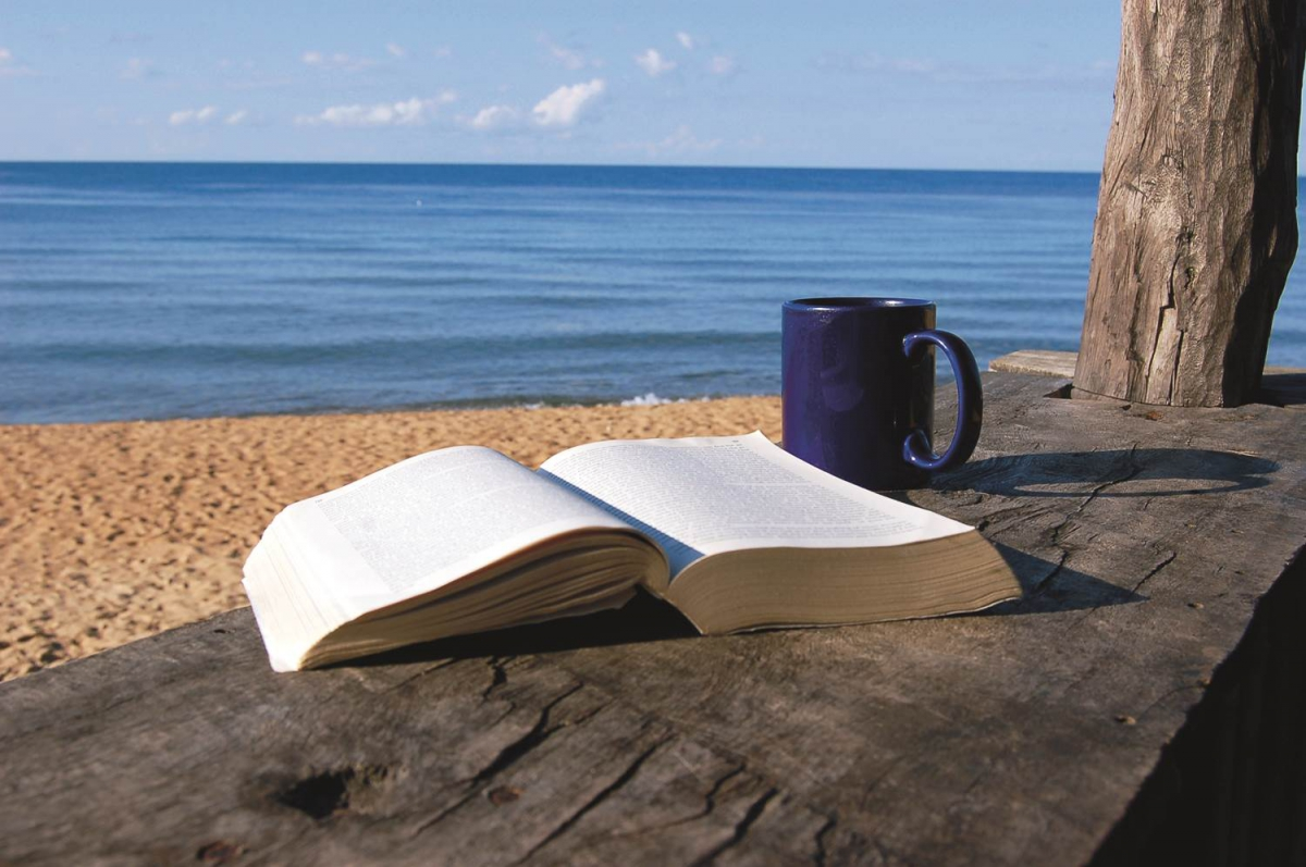 Reading the World at the Beach