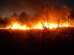 Savanna Fire in Mali